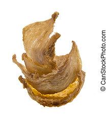 bird's nest. Edible bird's nest close up asia health food