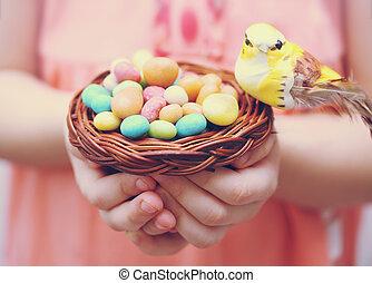 bird's nest in the hands of