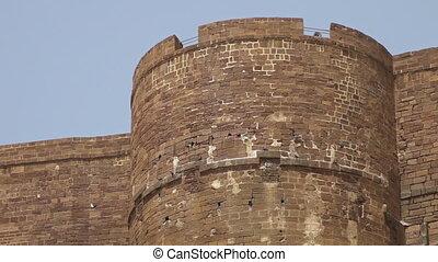 Birds nesting in the brickwork of Mehrangarh Fort - An...