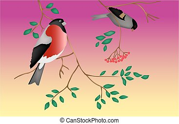 Birds on a tree. Twilight. Vector.