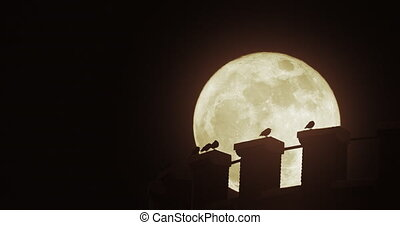 Birds on a water tower under a super moon.