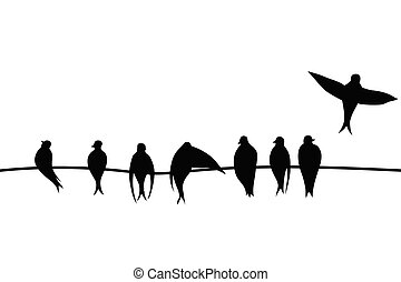 Birds on a wire vector illustration on white background