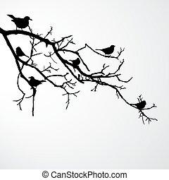 birds on branch - vector illustration of birds sitting on a...
