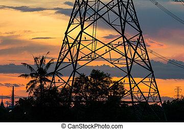 birds on electricity pillar at sunset