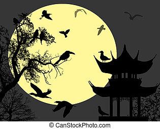 Birds on night landscape