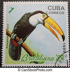 Birds on postmark