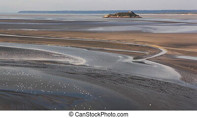 Birds on sand and flowing - Le Mont Saint-Michel