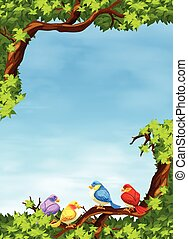 Birds on the branch at daytime