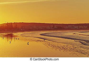 Birds on the sunset.