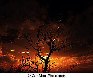 Birds On Tree With Sunset Background