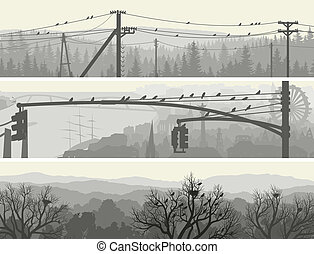 Birds on trees and power lines.
