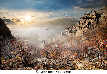 Birds over autumn rocks