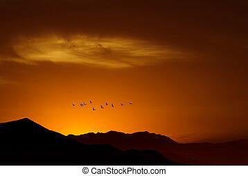 Birds over sunny golden background