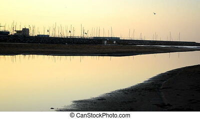 Birds reflected on water 02 - View of calmed waters of the...