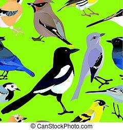 Birds seamless pattern