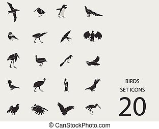 Birds set of flat icons. Vector illustration
