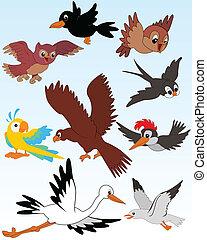 Birds - Set of vector illustrated birds - kid style