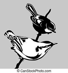 birds silhouette on gray background, vector illustration