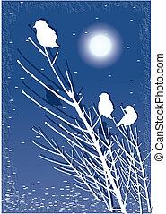 Birds silhouette on tree
