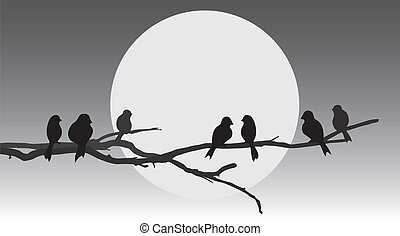 Birds sitting on a branch