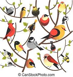 Birds sitting on tree branch vector flat different bird...