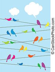 birds sitting on wire, vector