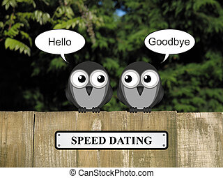 Birds Speed dating - Comical birds speed dating perched on a...