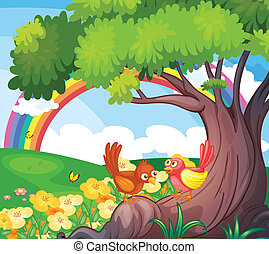 Birds under the tree with a rainbow in the sky