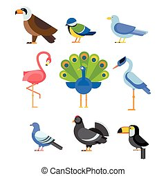 Birds vector set illustration isolated - Birds vector set....