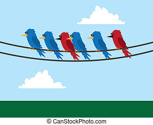 Various birds sitting on wire