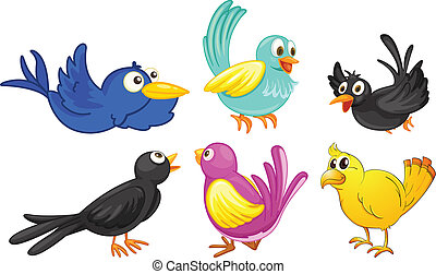 Birds with different colors - Illustration of birds with...