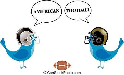 birds with football helmets talking