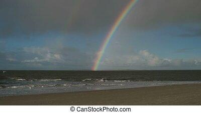 Birds with Rainbow on North Frisian Island Beach of Amrum in...
