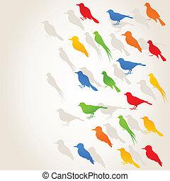 birds4, 飛行