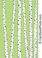 birk træ, baggrund, trunk