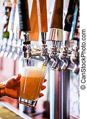 birra, brutta copia