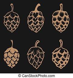 birra, set, luppolo, illustrations.