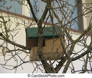 birs nesting box house - renovated block of flats...