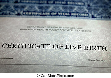 Birth Certificate Form Paper Official Baby Born