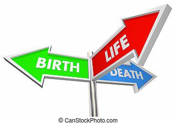 Birth Life Death Three 3 Way Arrow Signs 3d Illustration