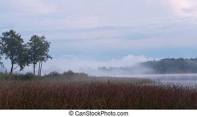 Birth of fog on the lake
