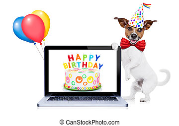 birthday, 犬, 幸せ