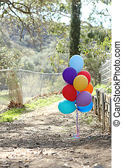 Balloons Outdoors at a Celebration with Copy Space