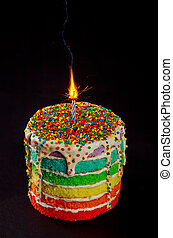 Birthday cake with burning candle and sparkle.