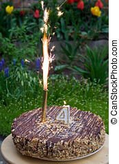Birthday cake with lighted candle and firework. Candle is...