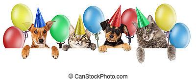 Birthday Cat and Dog Banner