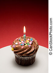 Chocolate birthday cupcake with chocolate frosting and sprinkles ready for wish making.