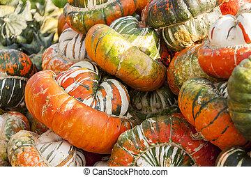 Bischofsmütze Turk Turban cucurbita pumpkin pumpkins from autumn harvest on a market
