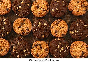 biscoito, biscoitos, chocolate