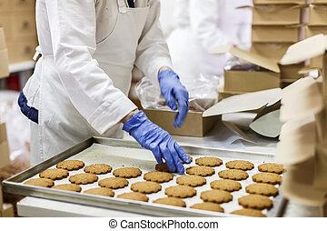 biscoitos, fábrica